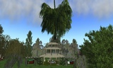 The giant willow Zen rezzed in and then over the pavilion