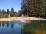 RL Pond and Fountain