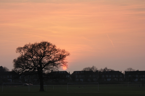 Sunset in March.jpg